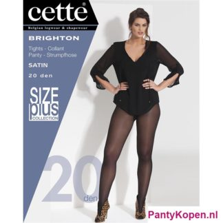 Brighton Plus Size Panty