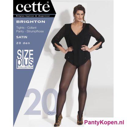 Brighton Plus Size Panty